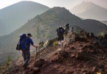 kije do trekkingu